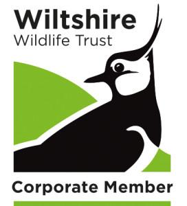WWT corporate logo 2015